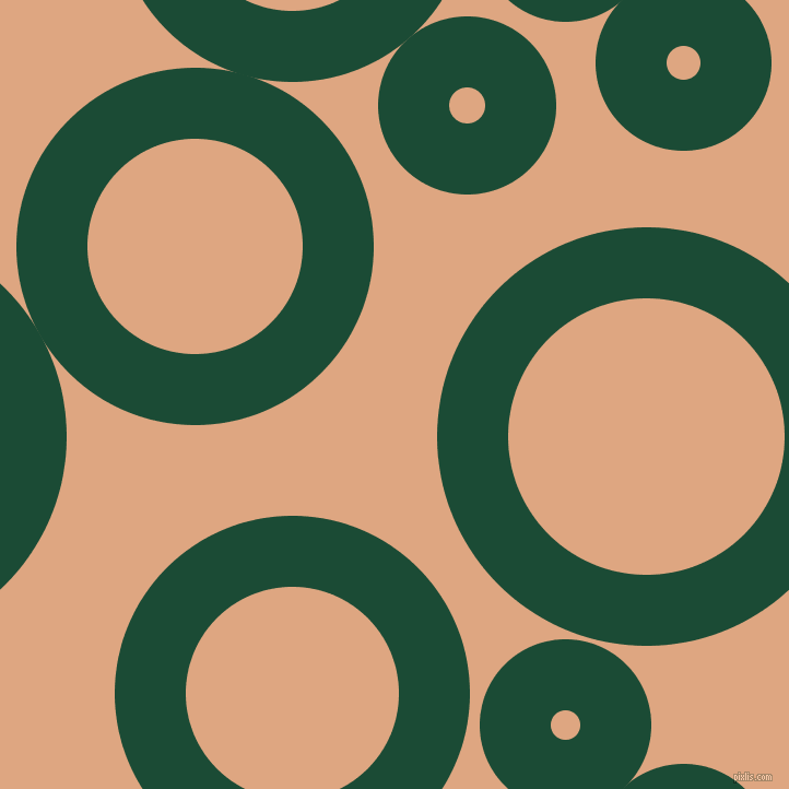 bubbles, circles, sponge, big, medium, small, 65 pixel line width, County Green and Tumbleweed circles bubbles sponge soap seamless tileable