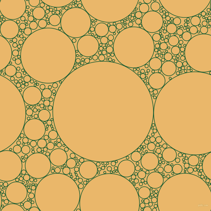 bubbles, circles, sponge, big, medium, small, 2 pixel line widthCrusoe and Harvest Gold circles bubbles sponge soap seamless tileable