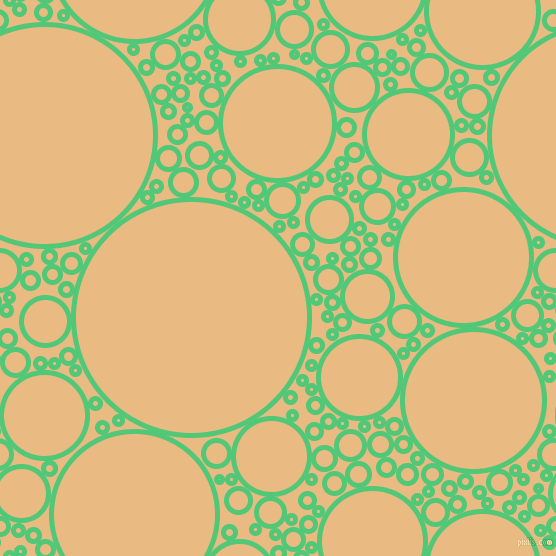 bubbles, circles, sponge, big, medium, small, 5 pixel line width, Emerald and Corvette circles bubbles sponge soap seamless tileable