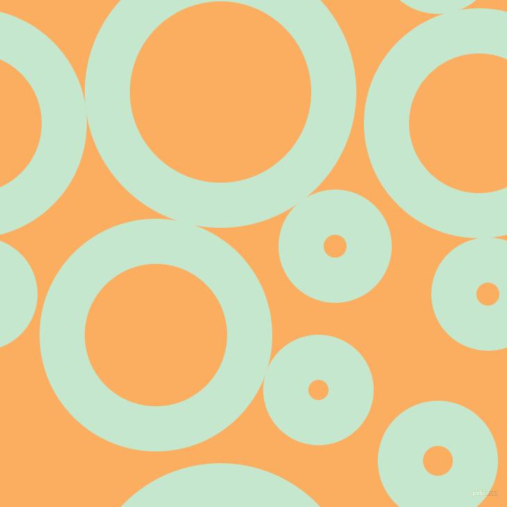 Papaya Whip and Turquoise circles bubbles sponge soap ... Papaya