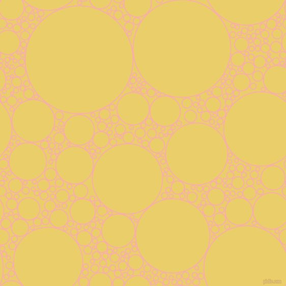 bubbles, circles, sponge, big, medium, small, 2 pixel line width, Sundown and Golden Sand circles bubbles sponge soap seamless tileable