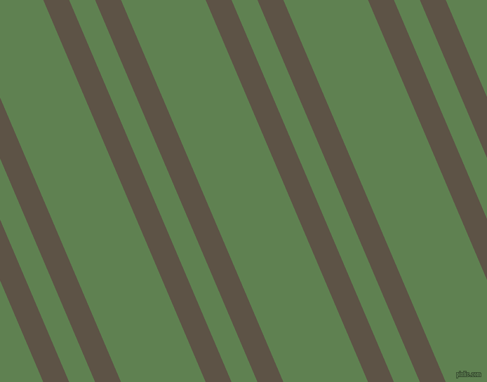 113 degree angles dual striped lines, 34 pixel lines width, 34 and 111 pixels line spacing, Judge Grey and Glade Green dual two line striped seamless tileable