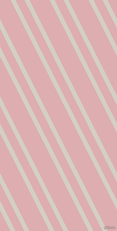 117 degree angle dual stripes lines, 14 pixel lines width, 26 and 58 pixel line spacing, Westar and Pale Chestnut dual two line striped seamless tileable