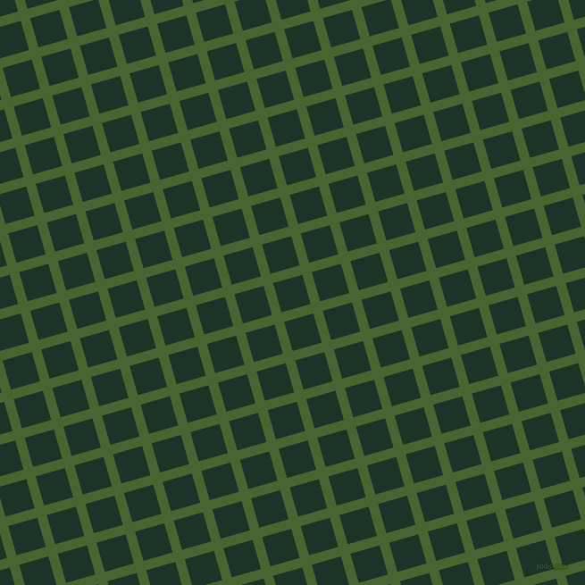 16/106 degree angle diagonal checkered chequered lines, 11 pixel lines width, 34 pixel square size, Dell and Cardin Green plaid checkered seamless tileable
