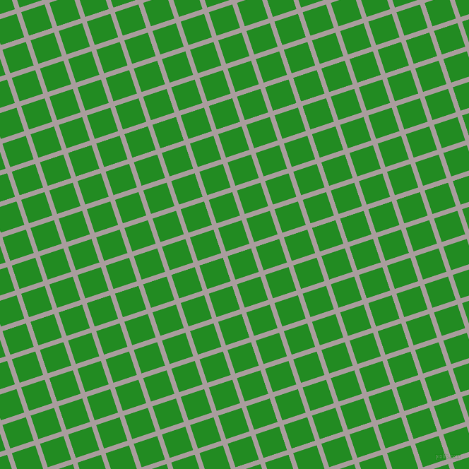 18/108 degree angle diagonal checkered chequered lines, 7 pixel line width, 35 pixel square size, Nobel and Forest Green plaid checkered seamless tileable