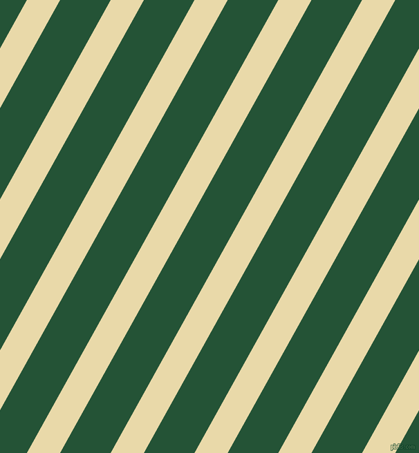 61 degree angle lines stripes, 42 pixel line width, 64 pixel line spacing, Sidecar and Kaitoke Green stripes and lines seamless tileable
